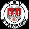TSV Blau-Weiß Stammen 1908